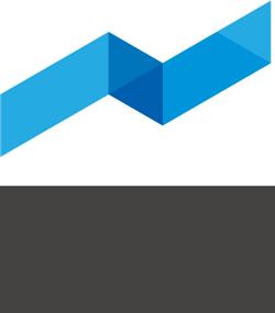 Vivid Reports Flex
